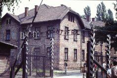 Resa till Auschwitz